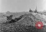 Image of German Red Cross dogs France, 1916, second 8 stock footage video 65675066059
