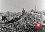 Image of German Red Cross dogs France, 1916, second 9 stock footage video 65675066059