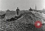Image of German Red Cross dogs France, 1916, second 10 stock footage video 65675066059