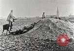Image of German Red Cross dogs France, 1916, second 12 stock footage video 65675066059