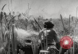 Image of Soviet soldiers Soviet Union, 1943, second 3 stock footage video 65675066079
