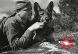 Image of Red Army field communication maneuvers Soviet Union, 1940, second 2 stock footage video 65675066222
