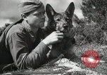 Image of Red Army field communication maneuvers Soviet Union, 1940, second 3 stock footage video 65675066222