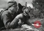 Image of Red Army field communication maneuvers Soviet Union, 1940, second 5 stock footage video 65675066222