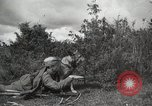 Image of Red Army field communication maneuvers Soviet Union, 1940, second 8 stock footage video 65675066222
