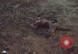 Image of Viet Cong attack Phouc Long Vietnam, 1965, second 6 stock footage video 65675066255