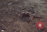 Image of Viet Cong attack Phouc Long Vietnam, 1965, second 7 stock footage video 65675066255