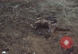 Image of Viet Cong attack Phouc Long Vietnam, 1965, second 9 stock footage video 65675066255