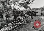 Image of American soldiers Buna New Guinea, 1943, second 2 stock footage video 65675066258