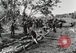 Image of American soldiers Buna New Guinea, 1943, second 3 stock footage video 65675066258