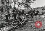 Image of American soldiers Buna New Guinea, 1943, second 5 stock footage video 65675066258
