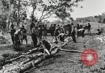 Image of American soldiers Buna New Guinea, 1943, second 6 stock footage video 65675066258