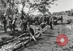 Image of American soldiers Buna New Guinea, 1943, second 7 stock footage video 65675066258