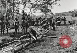 Image of American soldiers Buna New Guinea, 1943, second 8 stock footage video 65675066258