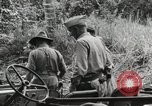 Image of U.S. General Robert Eichelberger Buna New Guinea, 1943, second 3 stock footage video 65675066259