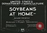 Image of soybean cultivation Manchuria China, 1928, second 5 stock footage video 65675066279