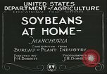 Image of soybean cultivation Manchuria China, 1928, second 6 stock footage video 65675066279