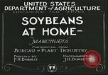 Image of soybean cultivation Manchuria China, 1928, second 8 stock footage video 65675066279