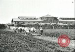 Image of soybean cultivation Harbin Manchukuo Manchuria China, 1928, second 12 stock footage video 65675066281