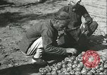 Image of persimmon transportation Chihli China, 1928, second 12 stock footage video 65675066290