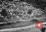 Image of motorcycle dirtbike race Tarn France, 1956, second 10 stock footage video 65675066318