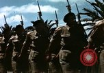 Image of Victory Day parade Tunis Tunisia, 1943, second 9 stock footage video 65675066352
