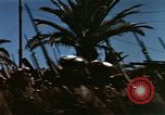 Image of Victory Day parade Tunis Tunisia, 1943, second 4 stock footage video 65675066353