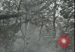 Image of Soviet Army pursues German forces in retreat Russia, 1944, second 9 stock footage video 65675066382
