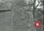 Image of Soviet Army pursues German forces in retreat Russia, 1944, second 10 stock footage video 65675066382