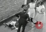 Image of Victory in Europe Day London England United Kingdom, 1945, second 8 stock footage video 65675066460