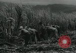 Image of Cuban Revolution Havana Cuba, 1959, second 5 stock footage video 65675066496