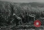 Image of Cuban Revolution Havana Cuba, 1959, second 6 stock footage video 65675066496