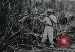 Image of Cuban Revolution Havana Cuba, 1959, second 9 stock footage video 65675066496