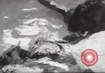 Image of beavers Zurich Switzerland, 1958, second 12 stock footage video 65675066502