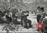 Image of American Army Chaplain Corps Beirut Lebanon, 1958, second 12 stock footage video 65675066524