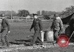 Image of General Eisenhower Cherbourg France, 1945, second 5 stock footage video 65675066626