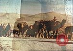 Image of agriculture Afghanistan, 1982, second 1 stock footage video 65675066734