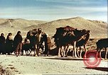 Image of agriculture Afghanistan, 1982, second 4 stock footage video 65675066734