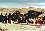 Image of agriculture Afghanistan, 1982, second 5 stock footage video 65675066734