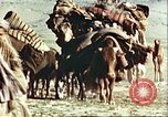 Image of agriculture Afghanistan, 1982, second 11 stock footage video 65675066734