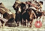 Image of agriculture Afghanistan, 1982, second 12 stock footage video 65675066734