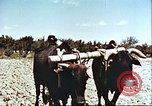 Image of means of transport Afghanistan, 1982, second 6 stock footage video 65675066736