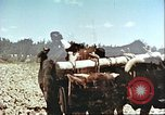 Image of means of transport Afghanistan, 1982, second 8 stock footage video 65675066736