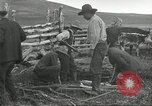 Image of cattle branding United States USA, 1918, second 4 stock footage video 65675066753