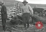 Image of cattle branding United States USA, 1918, second 6 stock footage video 65675066753