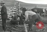 Image of cattle branding United States USA, 1918, second 8 stock footage video 65675066753