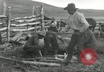 Image of cattle branding United States USA, 1918, second 11 stock footage video 65675066753