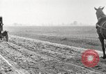 Image of cotton picking United States USA, 1920, second 7 stock footage video 65675066804