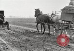 Image of cotton picking United States USA, 1920, second 10 stock footage video 65675066804