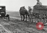 Image of cotton picking United States USA, 1920, second 12 stock footage video 65675066804